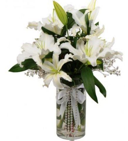 Lilyum Çiçek